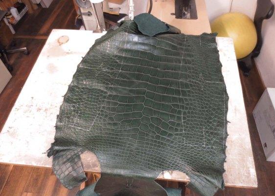 Green alligator